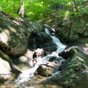Mountain Stream in Clarke County, Va.